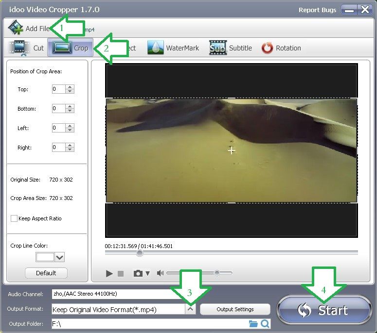 Common Video Formats Converter